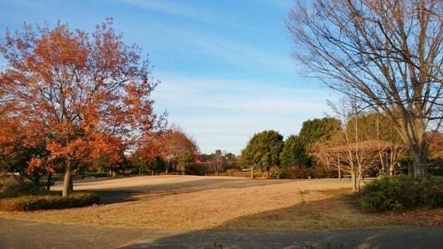 161208walking_fureai-park