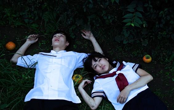 ○ガール柿写真 - バージョン 2