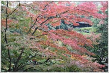 H28111402池田山公園