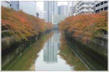 H28111403目黒川