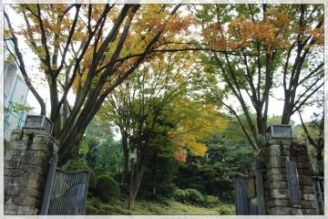 H28111401池田山公園