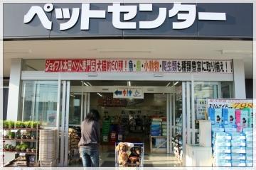 H28120401ジョイフル本田