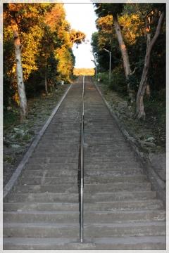 H28121718洲崎神社