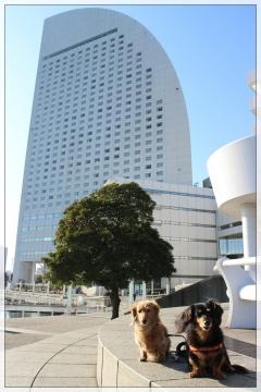 H29010729横浜散歩