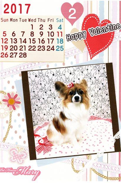 アンジェリーナ2月カレンダー