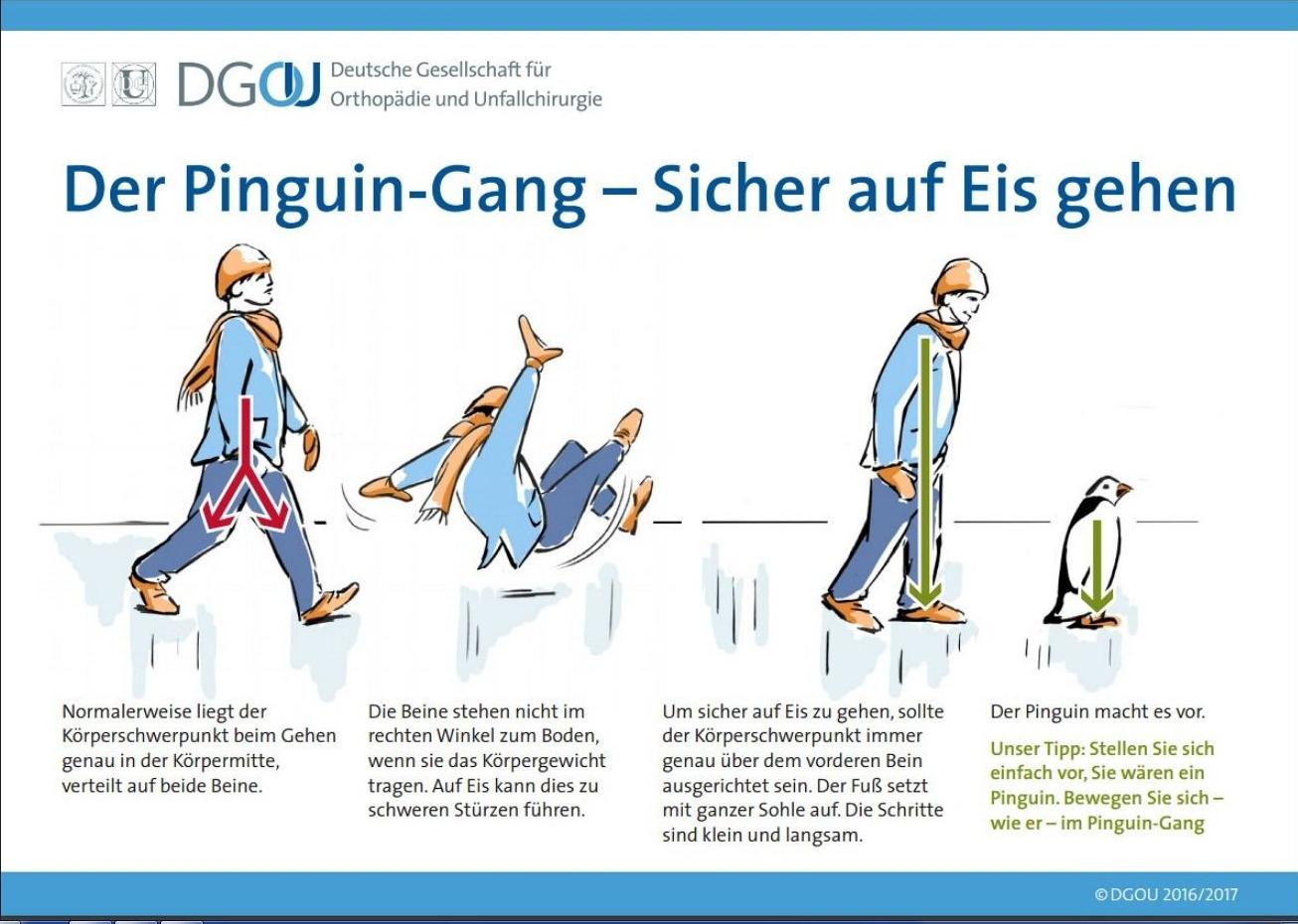 ペンギン歩行図解