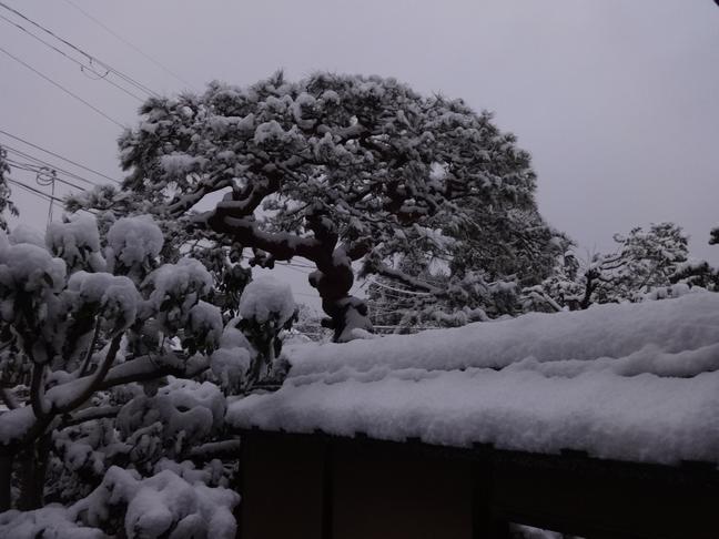 雪景色20