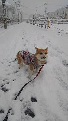 s-雪と仁紀(2