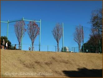 20161212  傾斜の広場  2  目白台運動公園