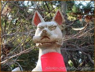 20170103  狐さん  4   水稲荷神社