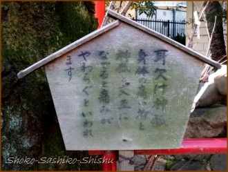 20170106  裏手  19   水稲荷神社