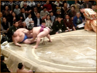 20170121  取組  3  相撲