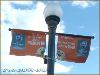 20170126  星川  4   熊谷駅まで