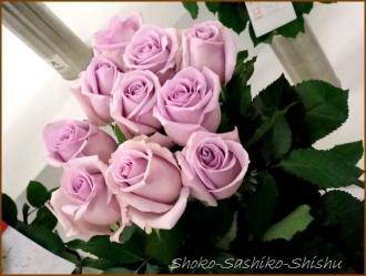20170208  バラ  1   花の展覧会
