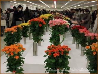20170208  会場  1   花の展覧会
