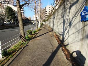 清掃前_歩道1