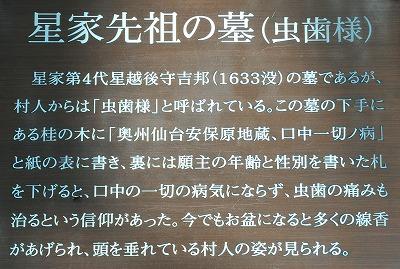 DSC_7246_20161129225923a3d.jpg