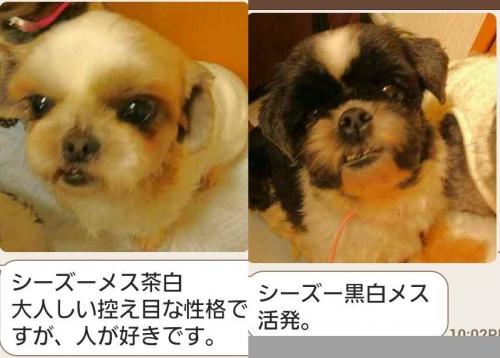 iwanaga-001-002.jpg