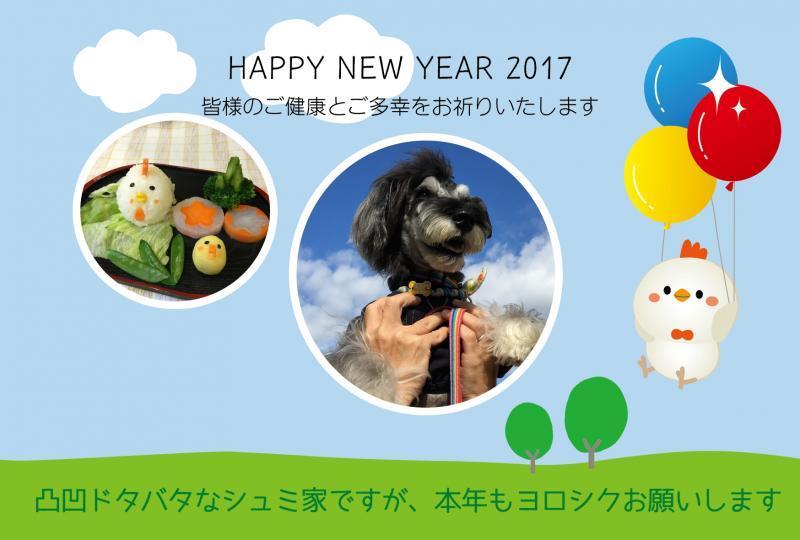 schmitt2017_convert_20170101101239.jpg