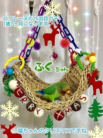 ①福ちゃんクリスマス