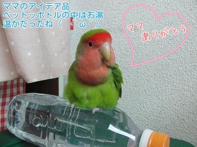 ⑦温かボトル