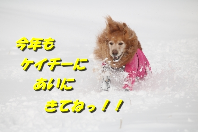 冬の白馬遠征 808