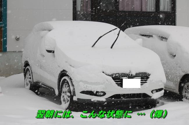 冬の白馬遠征 487