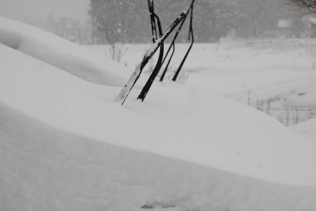 冬の白馬遠征 489