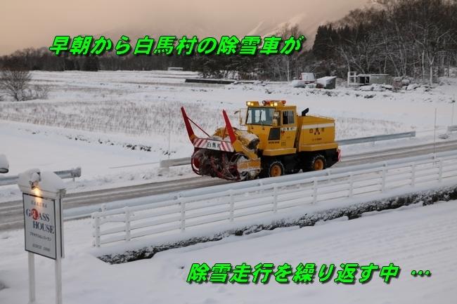 冬の白馬遠征 339