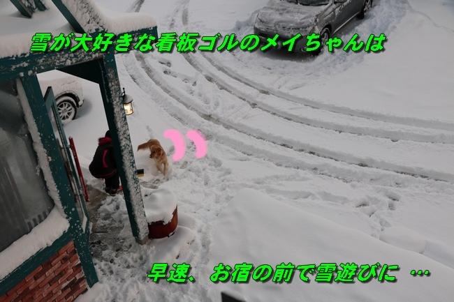 冬の白馬遠征 343