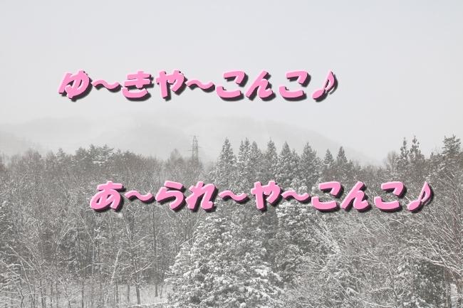 冬の白馬遠征 829