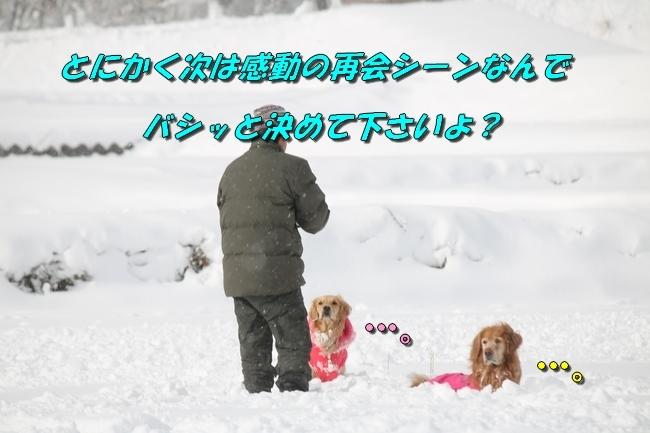 冬の白馬遠征 861