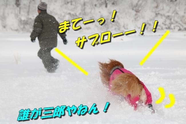 冬の白馬遠征 801