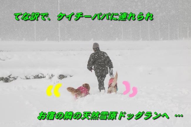 冬の白馬遠征 517