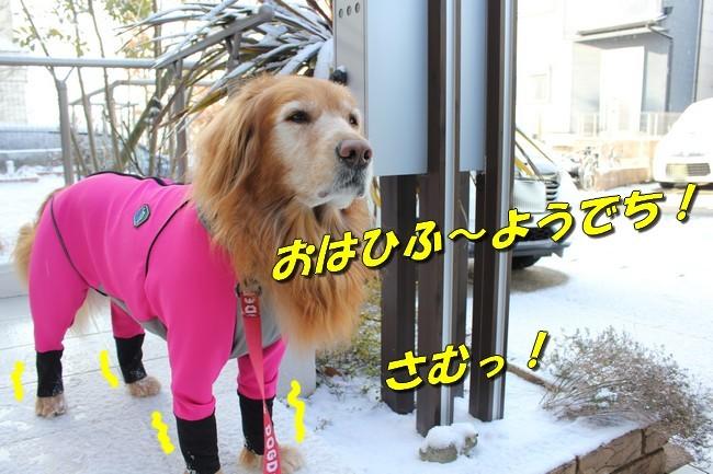 雪 022