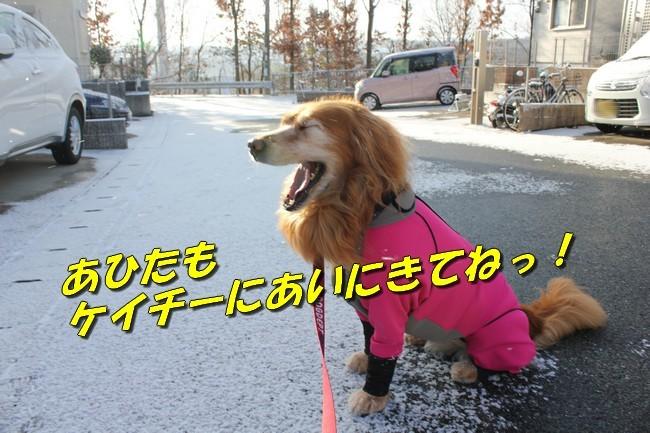 雪 024