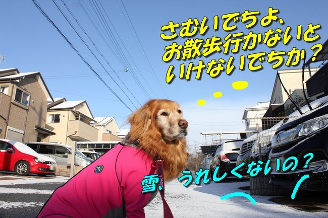 雪 031