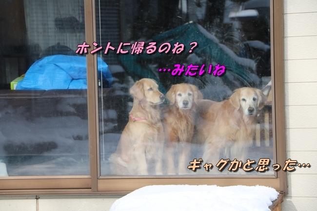 冬の白馬遠征 2074