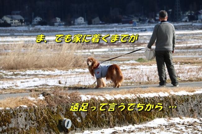 冬の白馬遠征 2102
