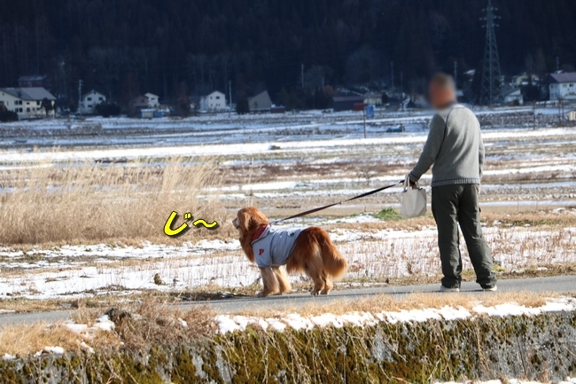冬の白馬遠征 2101