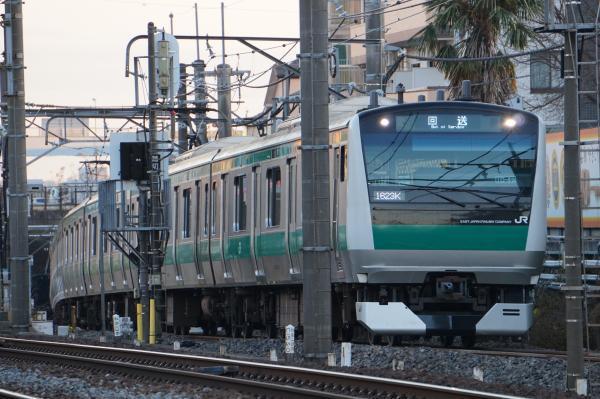 2016-12-10 埼京線E233系ハエ119編成 回送