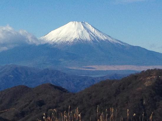 16121109丹沢