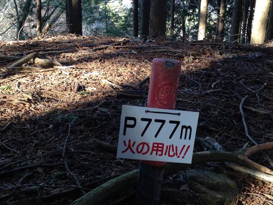 16121504羽賀場山