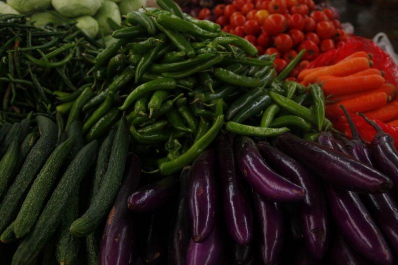 野菜でかい