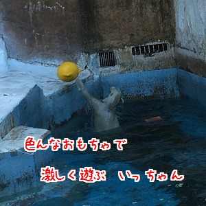 IMG_4799.jpg