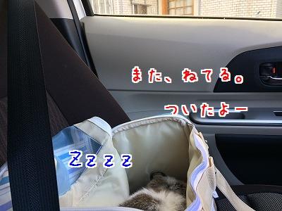 IMG_5112.jpg