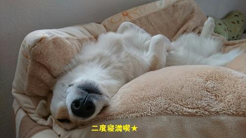 二度寝まんきつ