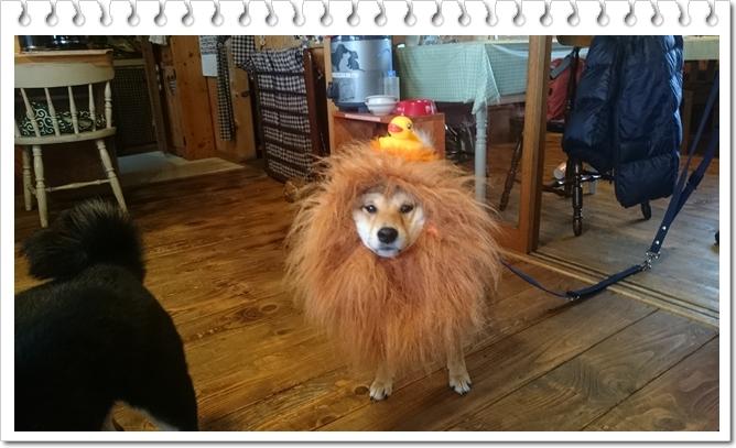 ライオン丸太郎