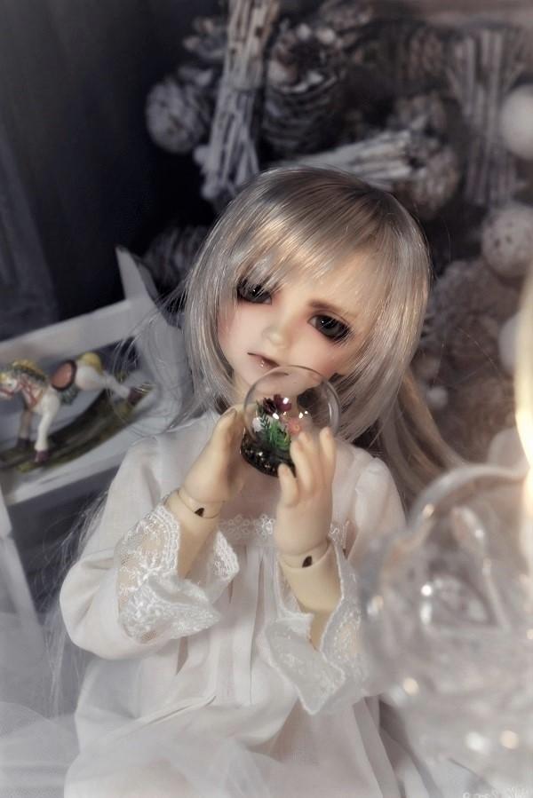 161202DSC_2754 3 (4)