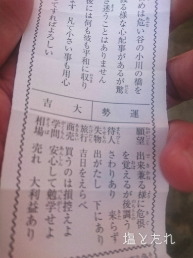 DSC_0301_20170103_02_初詣